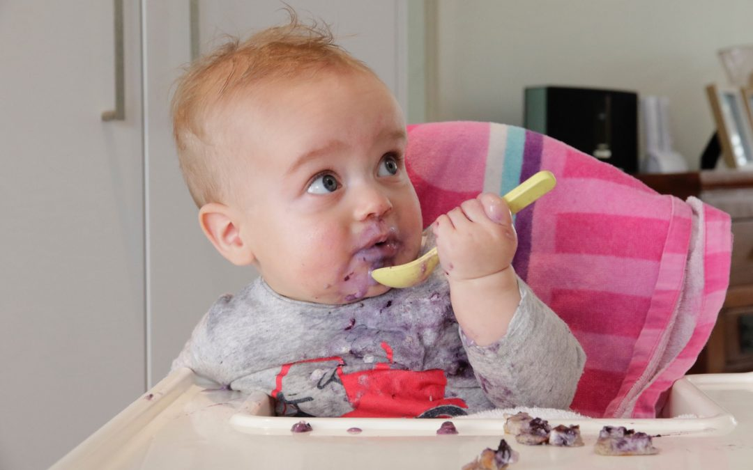 Starting Solids by Lucy Stewart Nutrition