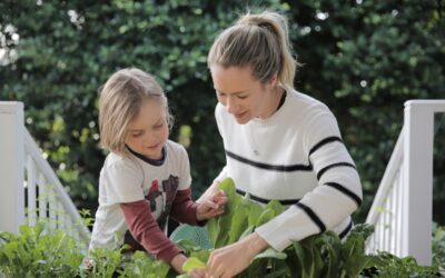 Kids Multivitamins – A Nutritionist's Review